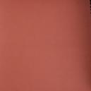 BSC-CLT-1439/Courvin Casco-898/Ferrugem-Ferrugem